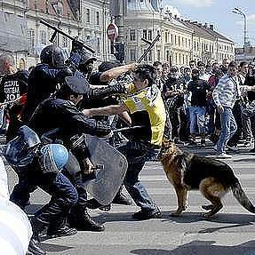 A huligánok nagy mértékben ártottak Kolozsvár megitélésének!