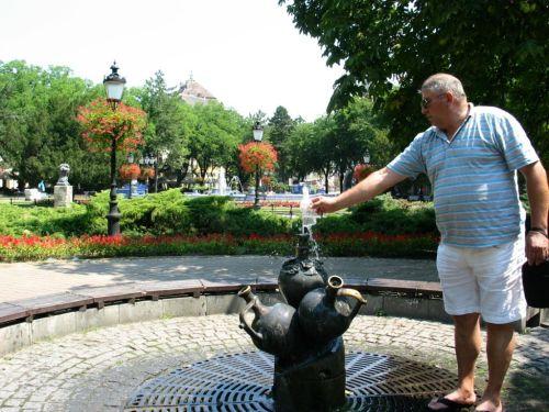 Szabadka főtere. A körülbelül százezer lakosú vajdasági város főtere olyan, mint egy park. Ömlik a nyugodtságot, kellemes közérzetet árasztó zöld. (Saját felvételek. A fotók augusztus elején készültek)