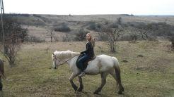 Csak meg ne rúgja a másik lovat...