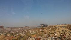 On our way back from the mud volcanoes: Murat also showed us cows eating from a smoking garbage dump
