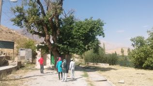 On September 18, 2017 we woke up at 9. Right after breakfast we went to see the village of Padena. It's basically an oasis in the arid region: they cultivate apple, nuts and so on. Our first stop was the cemetery. Surprisingly few people have been buried here. We didn't get a clear answer, why. The tree in the picture is old… :)