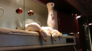 Ducks overlooking the gas stove… :) Hungry, girls and boys?