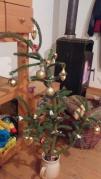 Szerény karácsonyfánk