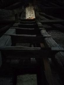 A toronyba is felmentünk