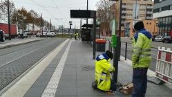 December elsejétől már a kehli városházáig lehet majt utazni villamossal Strasbourgból. Intenzíven folynak a munkálatok...