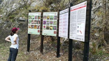 Tájékoztató táblák a koppándi (Copăceni) bejáratnál