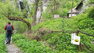 Vasárnap a szolcsvai búvópatak barlangja volt műsoron (Huda lui Papară)