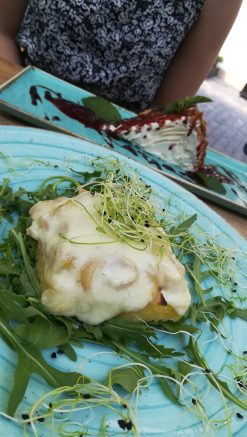 erdélyi hagymatokányt gratin sajttal, grillezett puliszkán tálalva