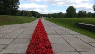 """Hatiny. 1943. március 22-én a falut az országot megszálló német haderő megsemmisítette. A második világháború idején a nácik további 186 települést tettek a földdel egyenlővé Fehéroroszországban…! """"Véres szőnyeg"""" vezet az emlékhelyhez..."""