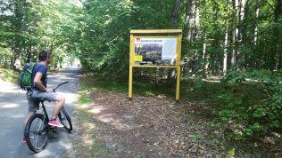 Amolyan tanösvény állt a látogatók rendelkezésére a különféle növényekről, állatokról. Az erdő legsúlyosabban az első világháború során károsodott. A németek 1915 augusztusában foglalták el, az erdő nyugati részén (a mai lengyel területeken) vasutakat építettek a fakitermelés fejlesztésére. Az utolsó bölényt 1919-ben ejtették el, ugyanebben az évben (februárban) a Belavezsai-erdő Lengyelországhoz került. A bölények újratelepítése a második világháború után. 1921-ben a lengyel állam védetté nyilvánította az erdőt, 1929-ben állatkerti bölényeket telepítettek le, ezzel újra meghonosítva a fajt