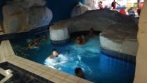 Valóságos vízipalota állt rendelkezésünkre. Minden medencében egyedi látvány varázsolja el a fürdőzőket: trópusi fürdő (32-34°C), jégbarlang fürdő (25-27°C), mozifürdő (34-36°C), Pávai termálfürdő (34-36°C), Gangesz fürdő (32-34°C), Római fürdő (32-34°C), tengeri fürdő (32-34°C), barlangfürdő (34-36°C)