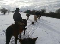 Indulnak a Kalotaszegi Turul Nomád Hagyományőrző Egyesület tagjai a sztánai farsang alkalmából szervezett lovas felvonulásra