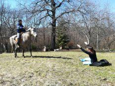 Majdnem fehér lovon