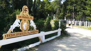 Alsószombatfalva (Sâmbăta de jos), lipicai tenyészlovak megtekintése. 1875-ben itt hozták létre az akkori Magyarország negyedik ménesuradalmát lipicai tenyészlovakkal