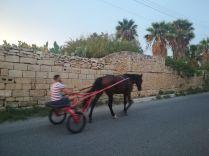 Útban hazafelé lovas homofutóval is találkoztam